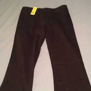NWT Tory Burch Classic Bootcut Jeans